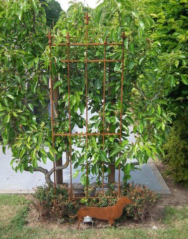Plantensteun met franse lelie