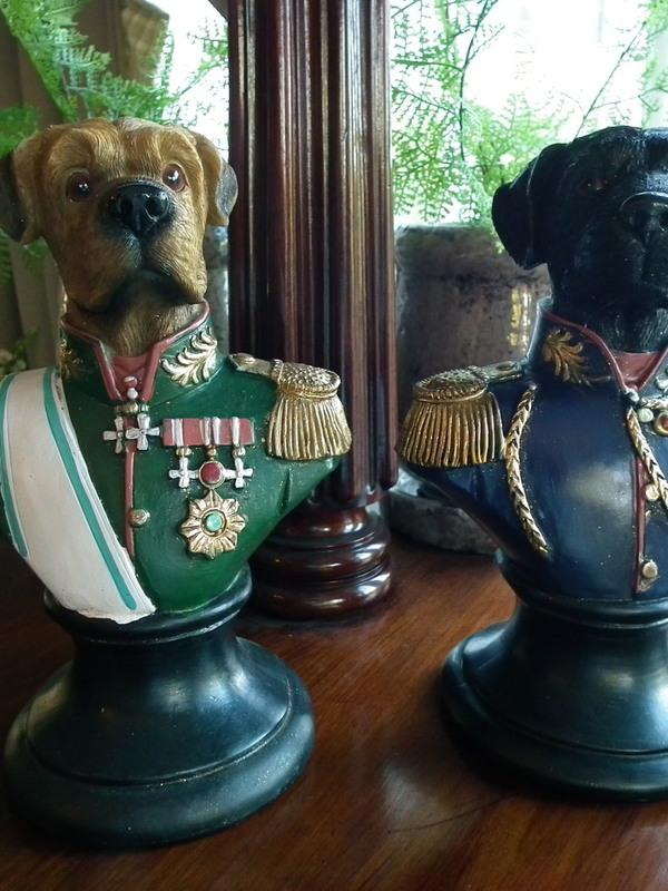 Vintage hond op voet met militair vest