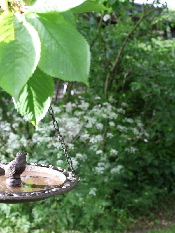Gietijzeren vogel bad hangend