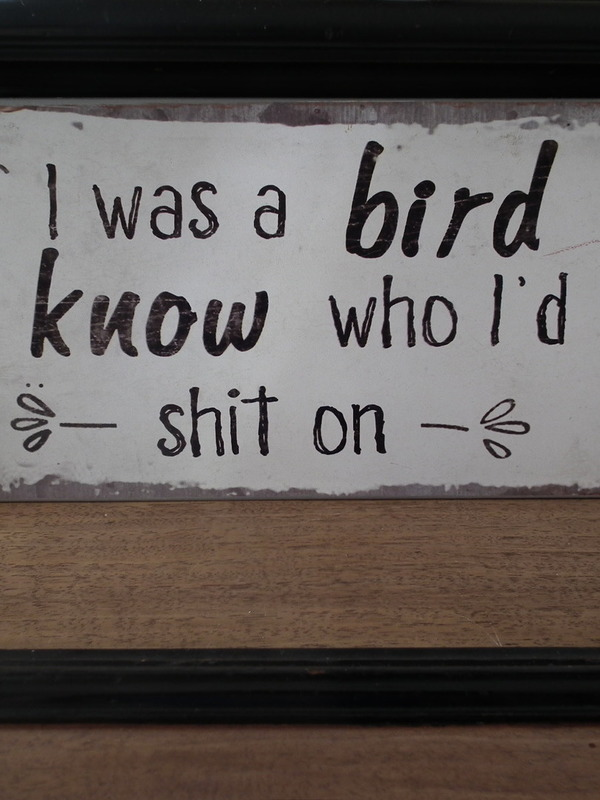 Tekstbord : If i was a bird i know who i'd shit on