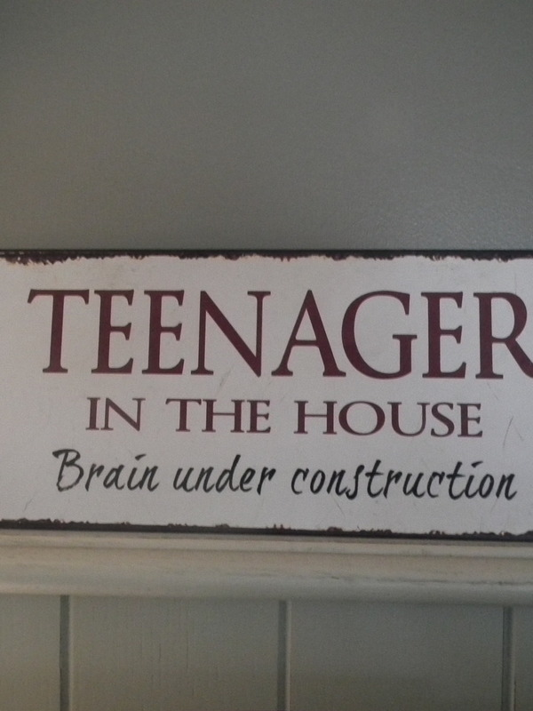 Tekstbord : Teenager in the house brain under construction