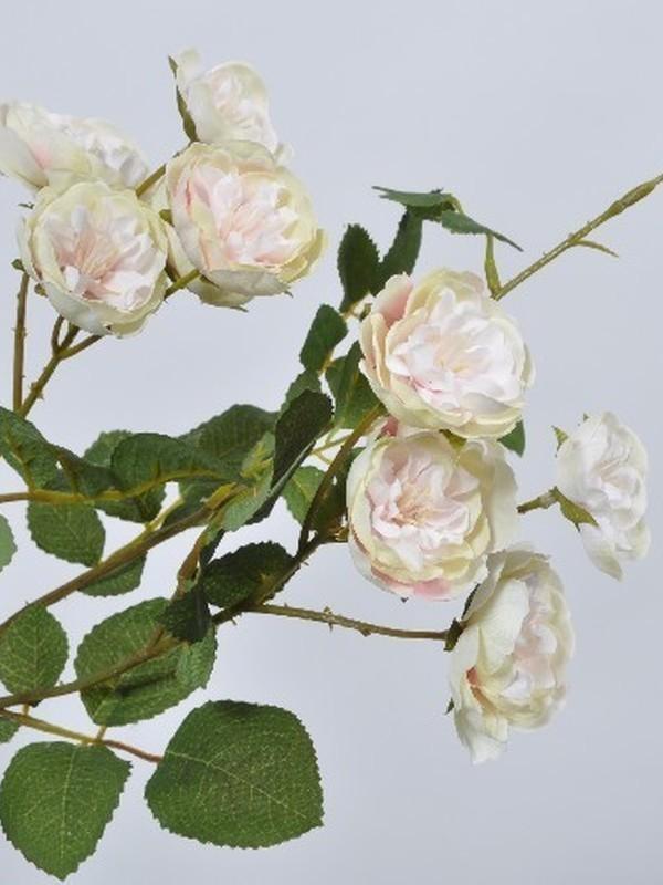 Trosroosje wit/groenig/roos