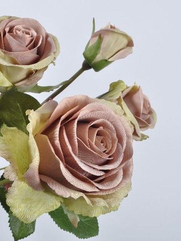 Rozentak 69 cm oud roos & groenig crème