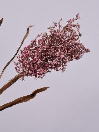 Gras tak roze 88 cm