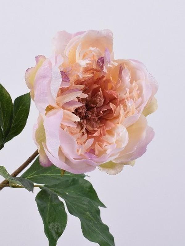 Pioen roos lavendel  59 cm