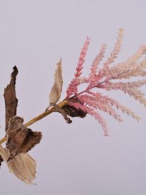 Gras pluim roze 60 cm