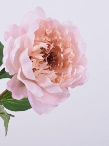 Pioen roos roze  59 cm