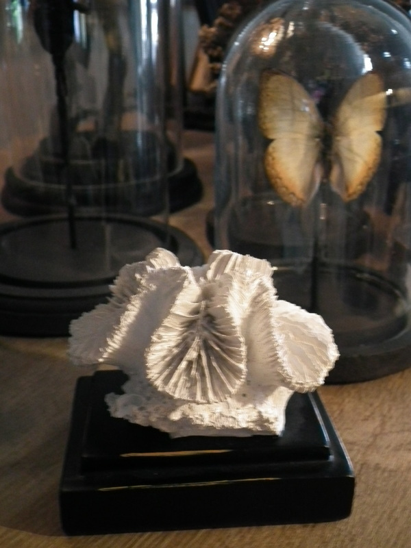 Koraal op voet H 8 cm