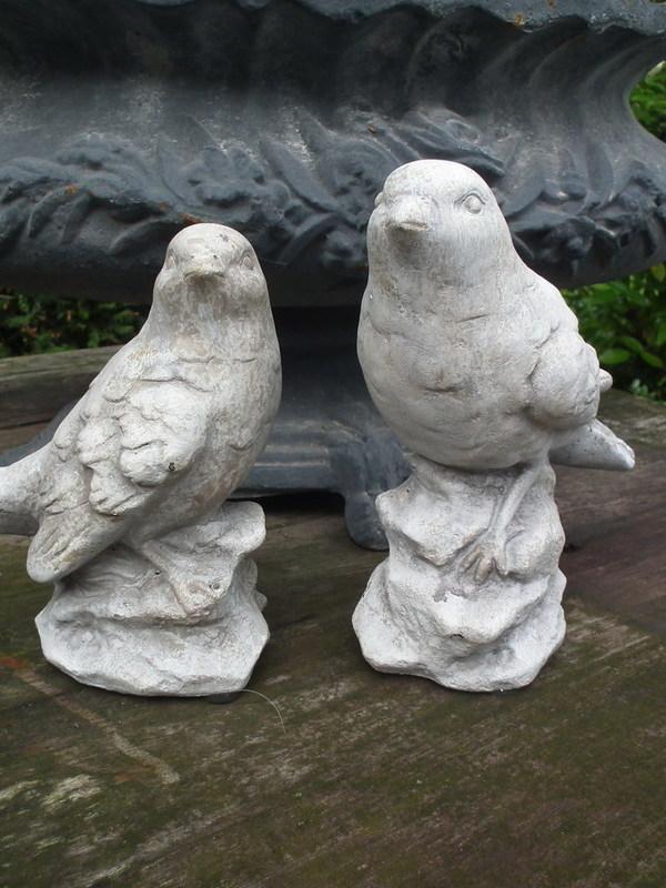 Set van 2 vogeltjes