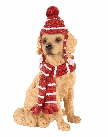 Bruin hondje met gebreide muts en sjaal