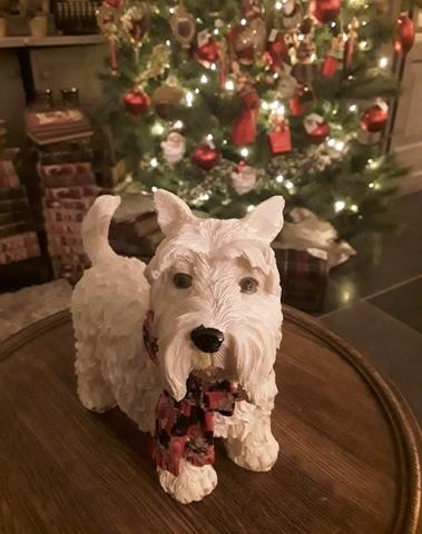 West Highland terrier met kerst sjaal