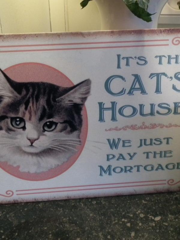 Tekstbord: It's the cat's house...