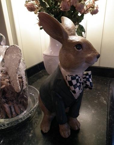 Zittend landelijk konijn met vest met grootte strik