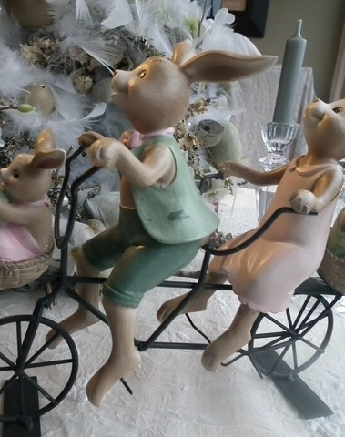 Konijnen gezin op fiets