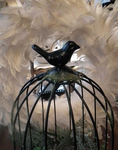 Vogelkooi met nestje